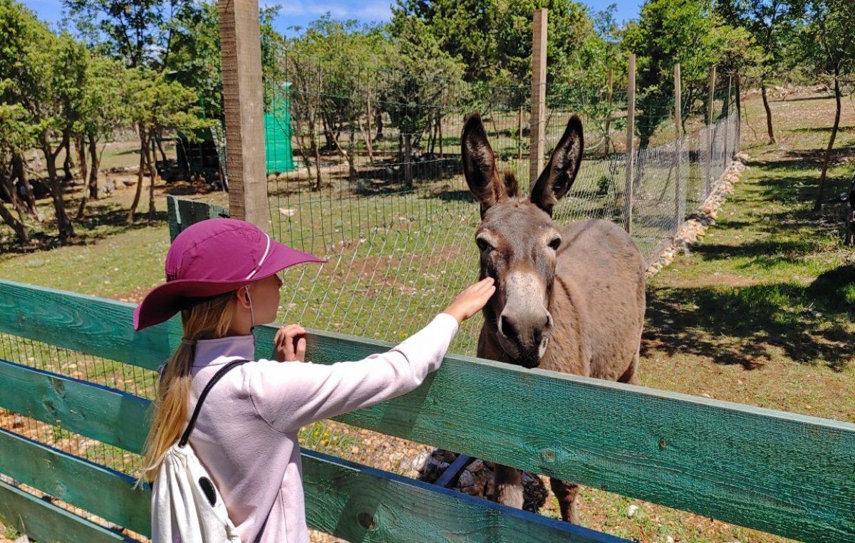 Na području općine Omišalj u lipnju 42% lanjskog turističkog prometa; kampovi briljiraju