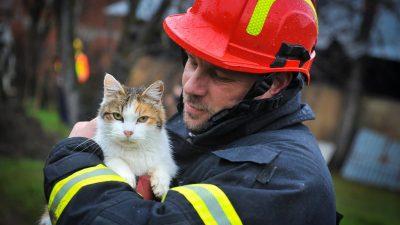 FOTO GALERIJA Vatrogasci s Krka još su u Petrinji, rade na visinama i hladnoći dok se tlo i dalje trese