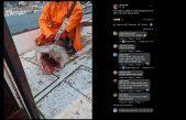 """Kod Krka ulovili strogo zaštićenog morskog psa pa ga bacili jer se """"teško reže"""""""