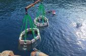 Na području Valunskog zaljeva postavljen umjetni riblji greben